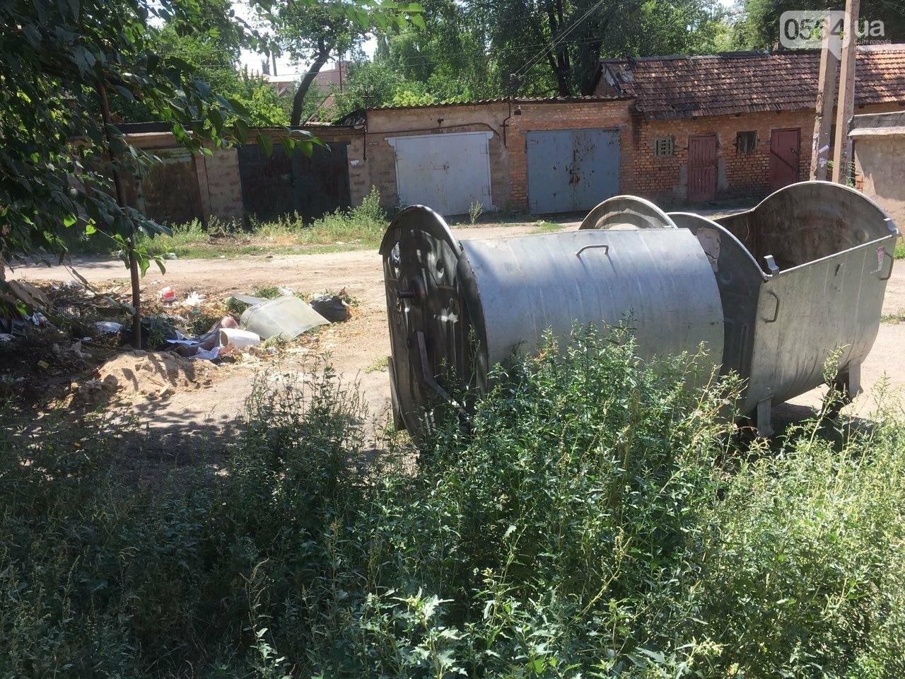 Криворожане помогли бездомной пожилой женщине, проживавшей за мусорными контейнерами, - ФОТО, ВИДЕО , фото-13