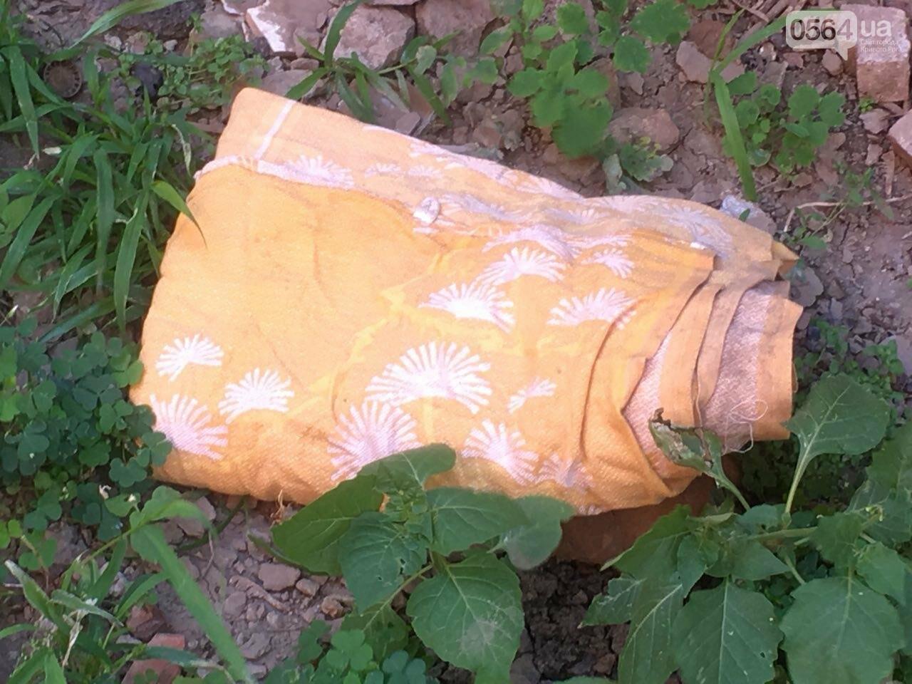 Криворожане помогли бездомной пожилой женщине, проживавшей за мусорными контейнерами, - ФОТО, ВИДЕО , фото-1