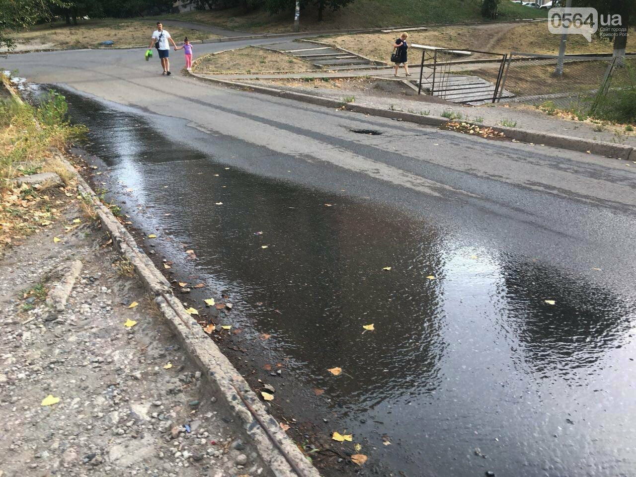 В Кривом Роге несколько дней заливает питьевой водой целый микрорайон, - ФОТО, ВИДЕО , фото-31