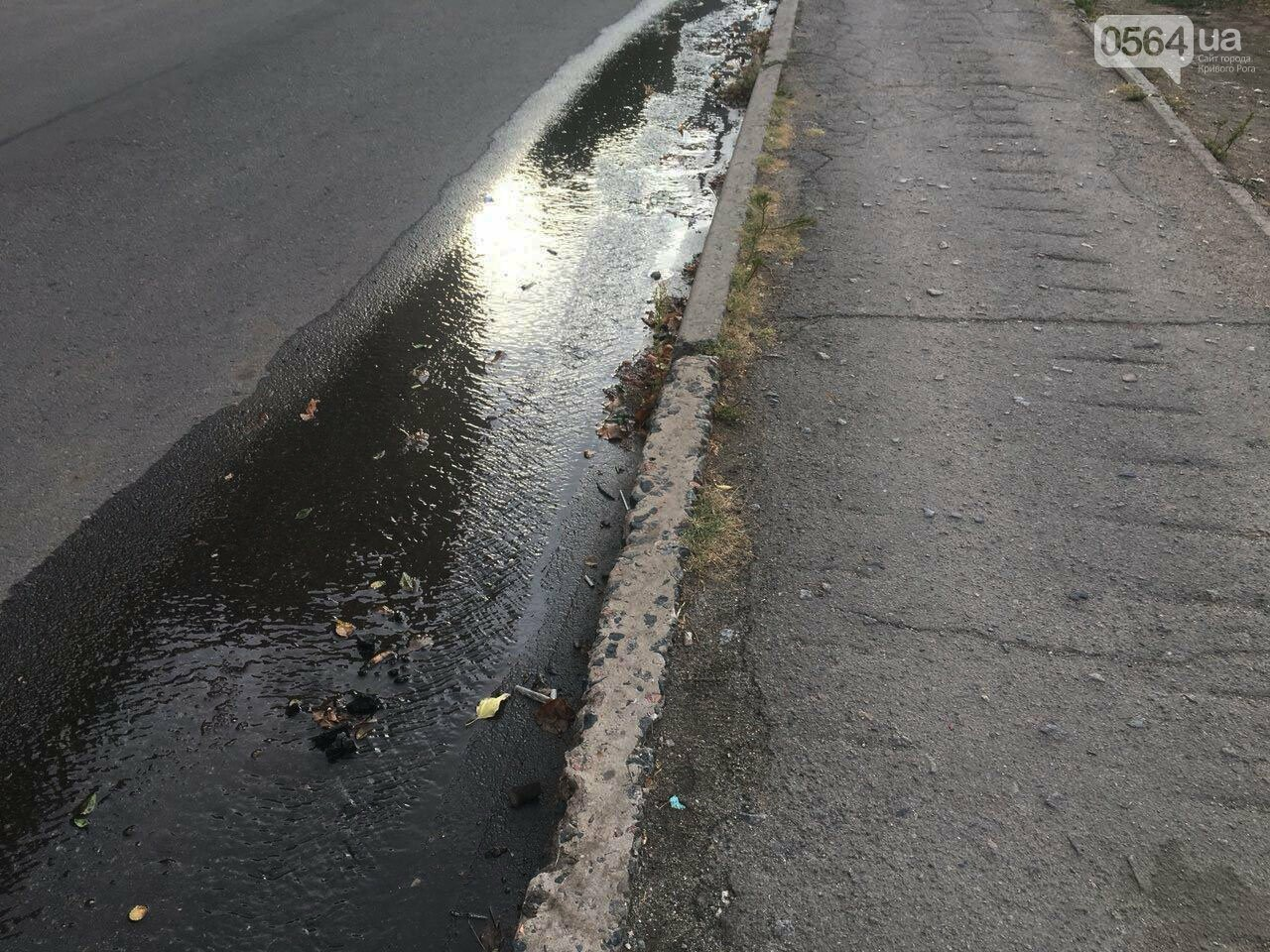 В Кривом Роге несколько дней заливает питьевой водой целый микрорайон, - ФОТО, ВИДЕО , фото-29