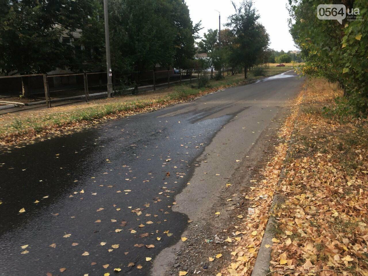 В Кривом Роге несколько дней заливает питьевой водой целый микрорайон, - ФОТО, ВИДЕО , фото-30