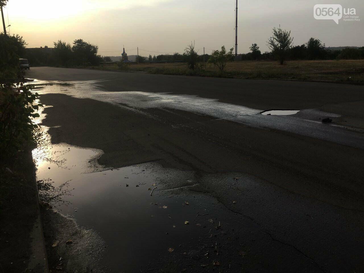 В Кривом Роге несколько дней заливает питьевой водой целый микрорайон, - ФОТО, ВИДЕО , фото-5