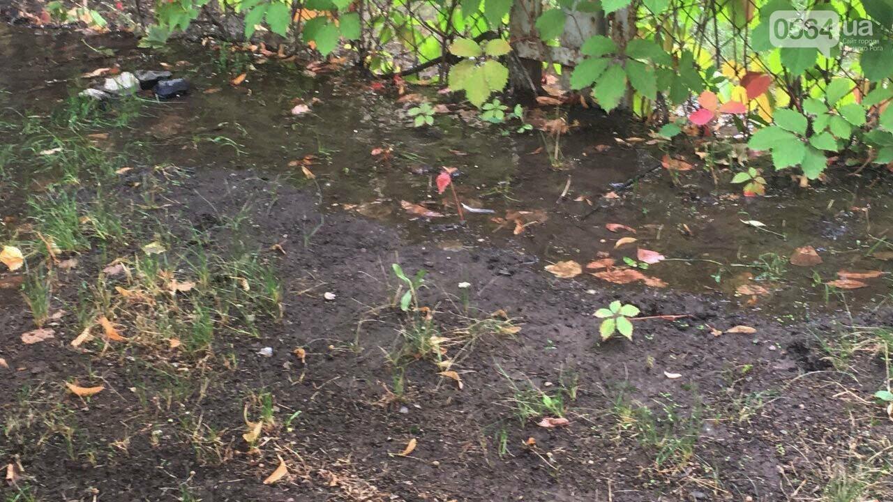В Кривом Роге несколько дней заливает питьевой водой целый микрорайон, - ФОТО, ВИДЕО , фото-21