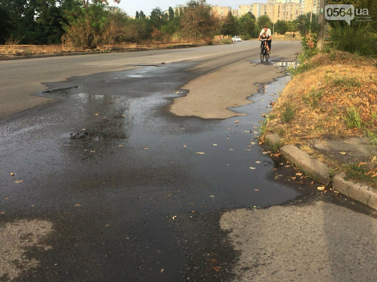 В Кривом Роге несколько дней заливает питьевой водой целый микрорайон, - ФОТО, ВИДЕО , фото-13