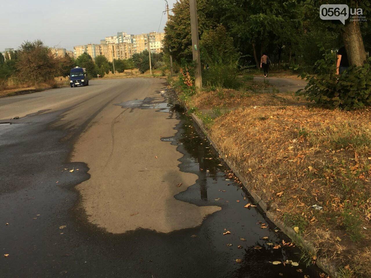 В Кривом Роге несколько дней заливает питьевой водой целый микрорайон, - ФОТО, ВИДЕО , фото-22