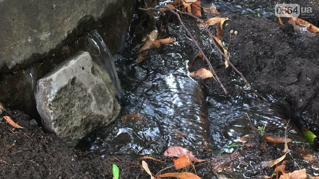 В Кривом Роге несколько дней заливает питьевой водой целый микрорайон, - ФОТО, ВИДЕО , фото-24