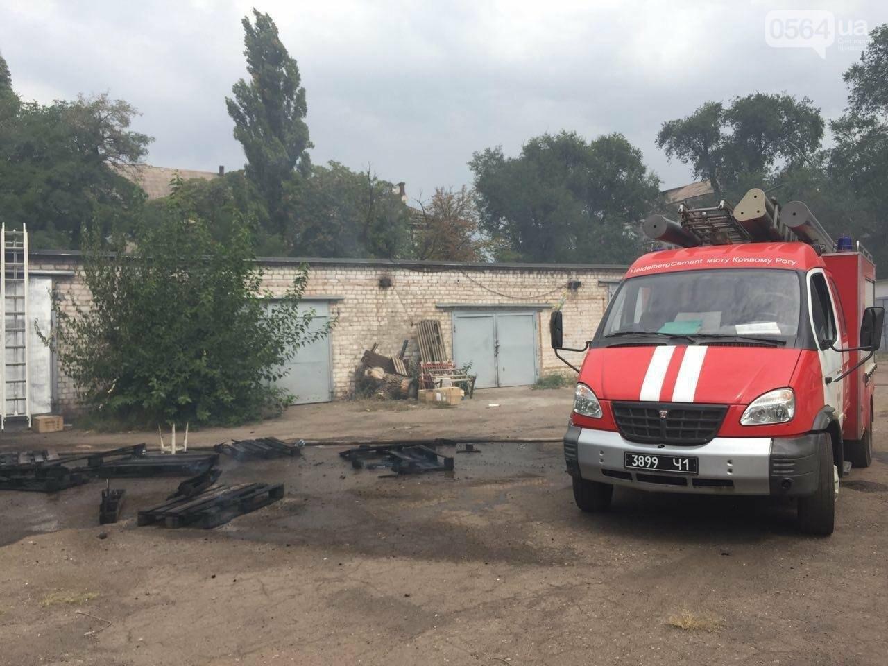 В Кривом Роге масштабный пожар: горели брошенные сараи, - ФОТО, ВИДЕО, фото-10