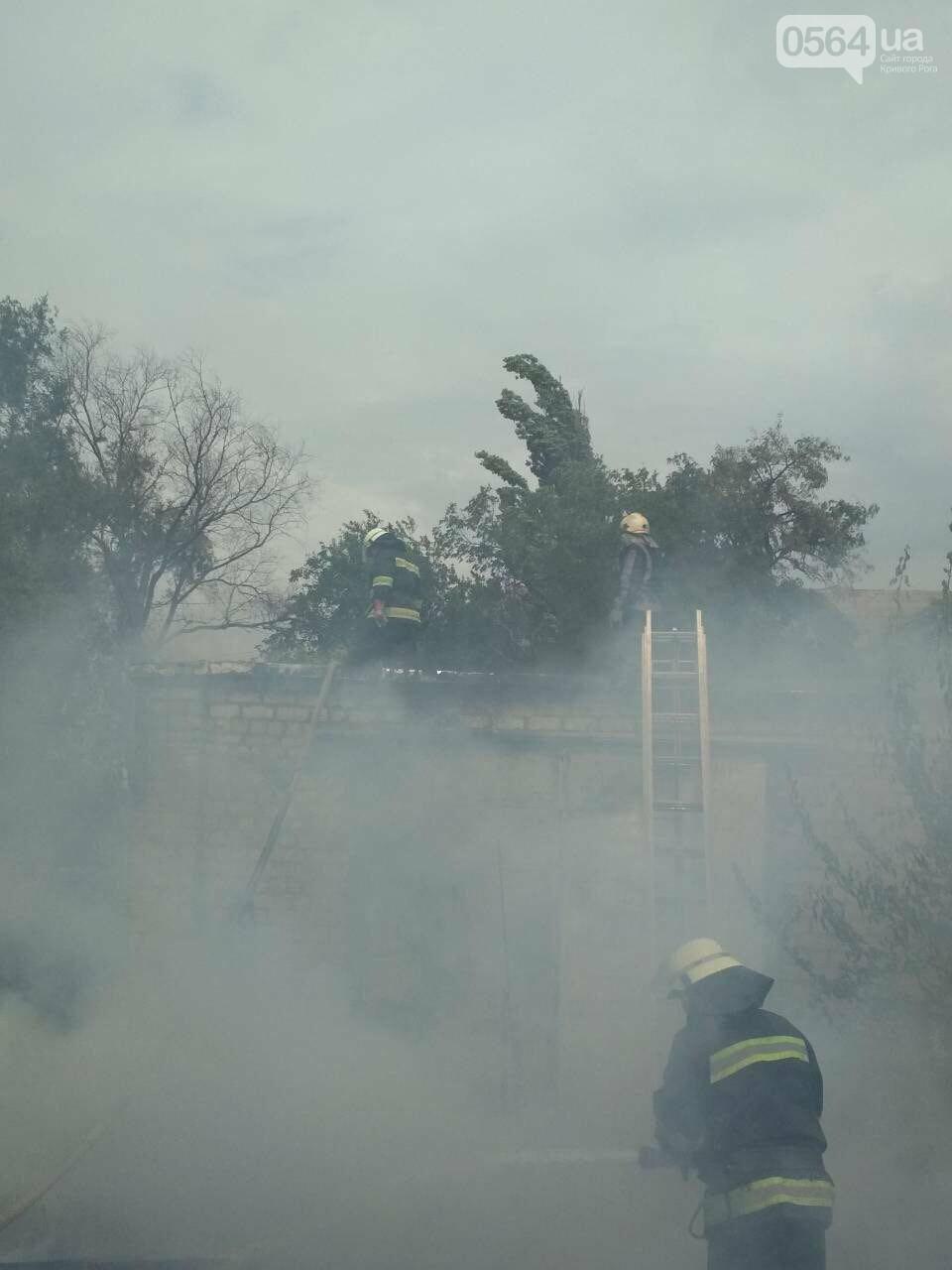 В Кривом Роге масштабный пожар: горели брошенные сараи, - ФОТО, ВИДЕО, фото-6