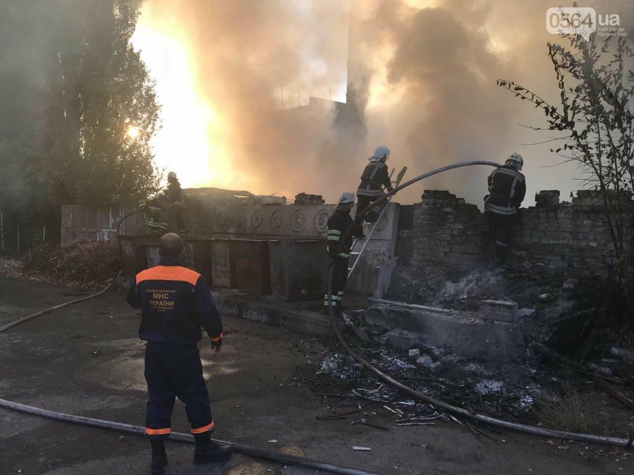 В Кривом Роге масштабный пожар: горели брошенные сараи, - ФОТО, ВИДЕО, фото-11