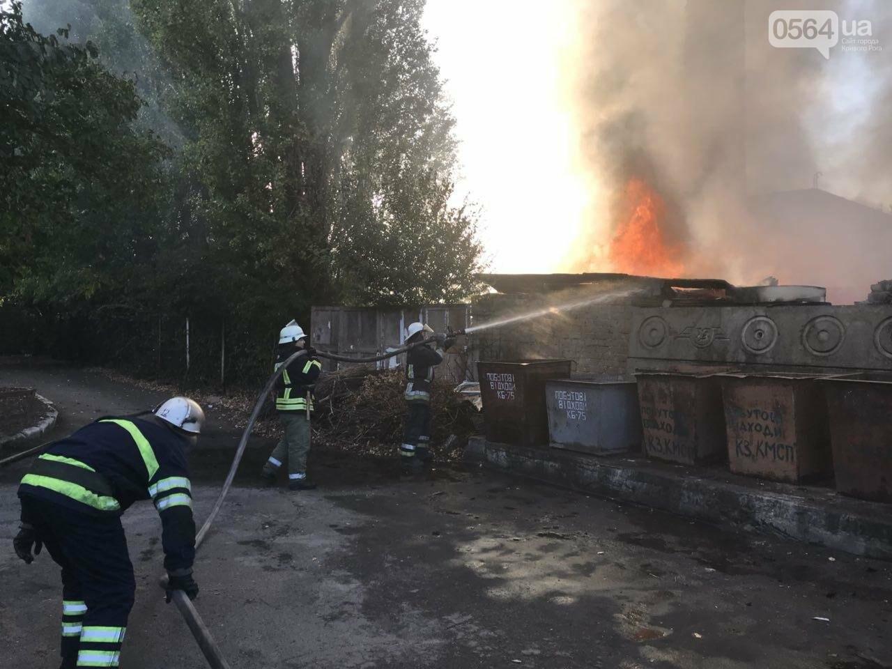 В Кривом Роге масштабный пожар: горели брошенные сараи, - ФОТО, ВИДЕО, фото-8