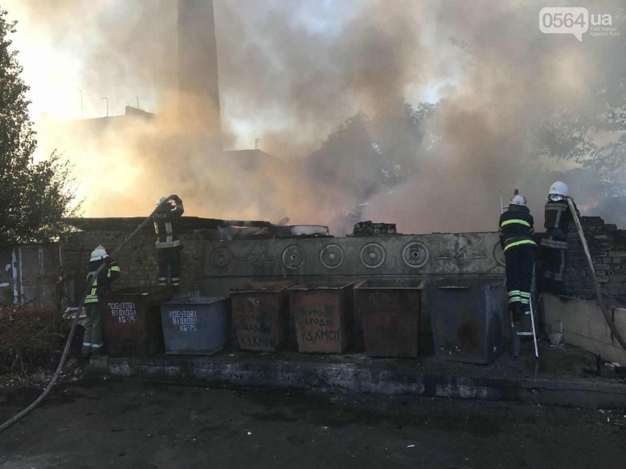 В Кривом Роге масштабный пожар: горели брошенные сараи, - ФОТО, ВИДЕО, фото-4