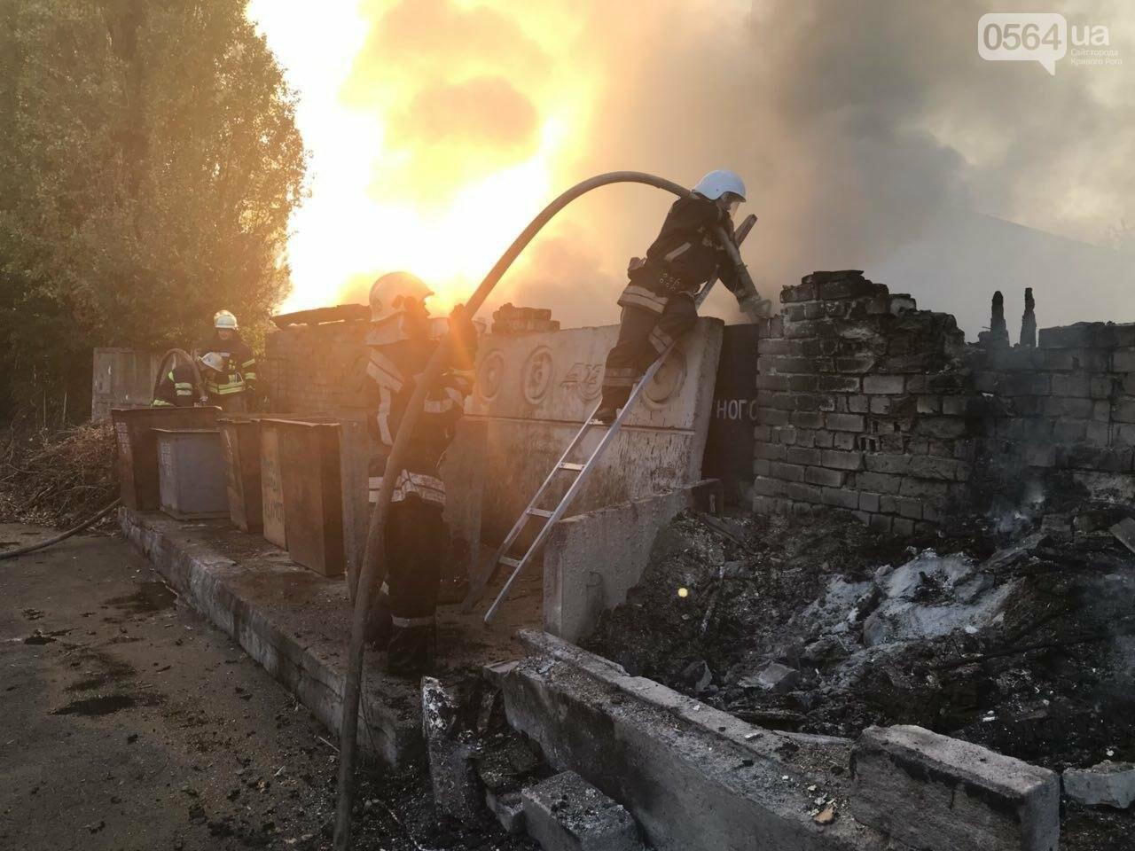 В Кривом Роге масштабный пожар: горели брошенные сараи, - ФОТО, ВИДЕО, фото-9