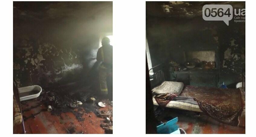 Под Кривым Рогом на пожаре погиб мужчина, - ФОТО, фото-1