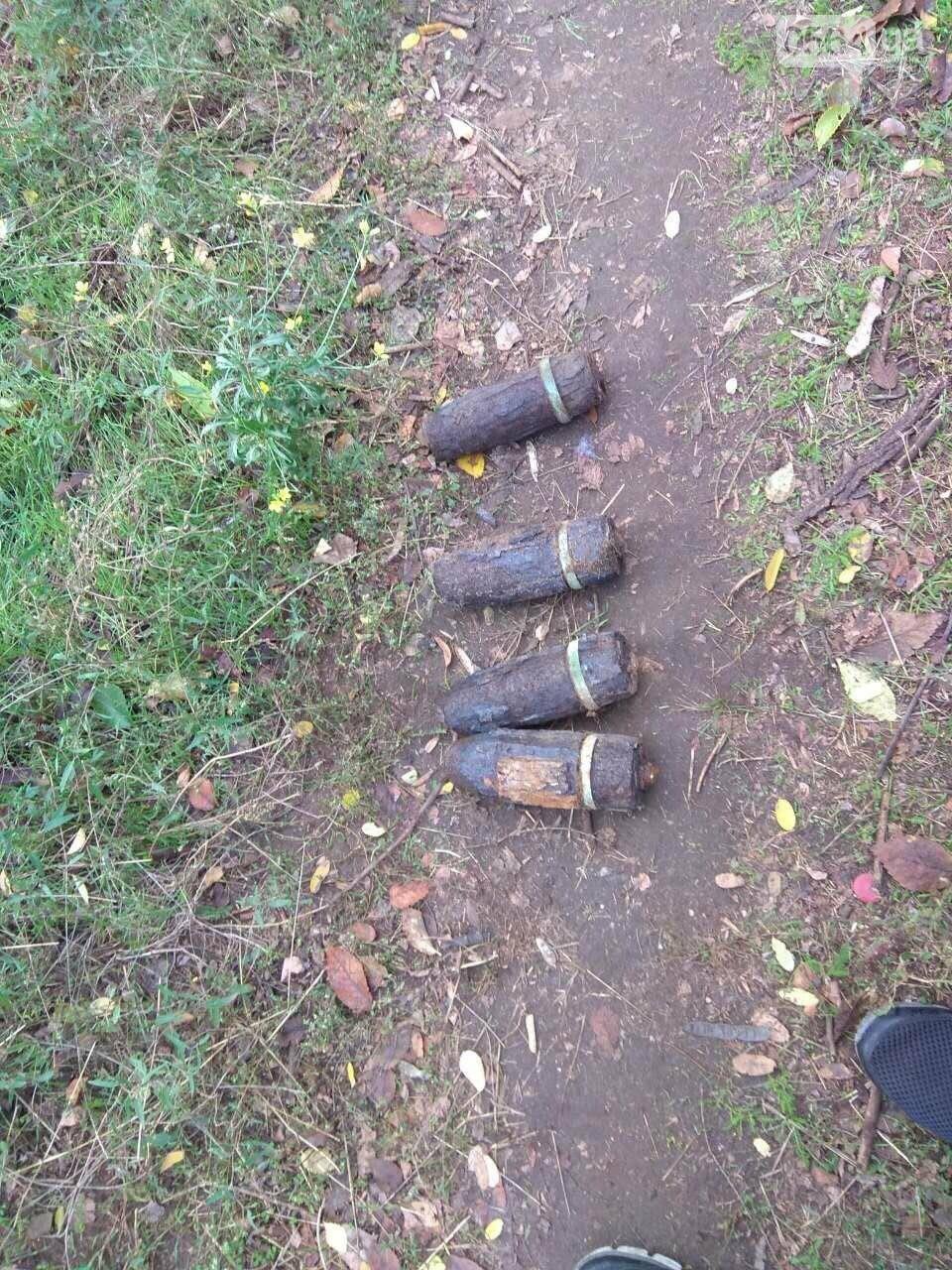 Криворожанин искал на поляне металлолом, а нашел боеприпасы, - ФОТО, фото-1