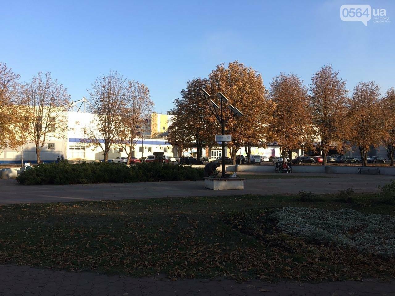 """Чтобы """"Солнечное дерево"""" продолжало """"жить"""" в Кривом Роге, на него установили антивандальную панель, - ФОТО , фото-8"""