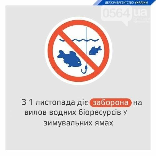 В Кривом Роге установлен запрет на вылов рыбы в зимовальных ямах, фото-2