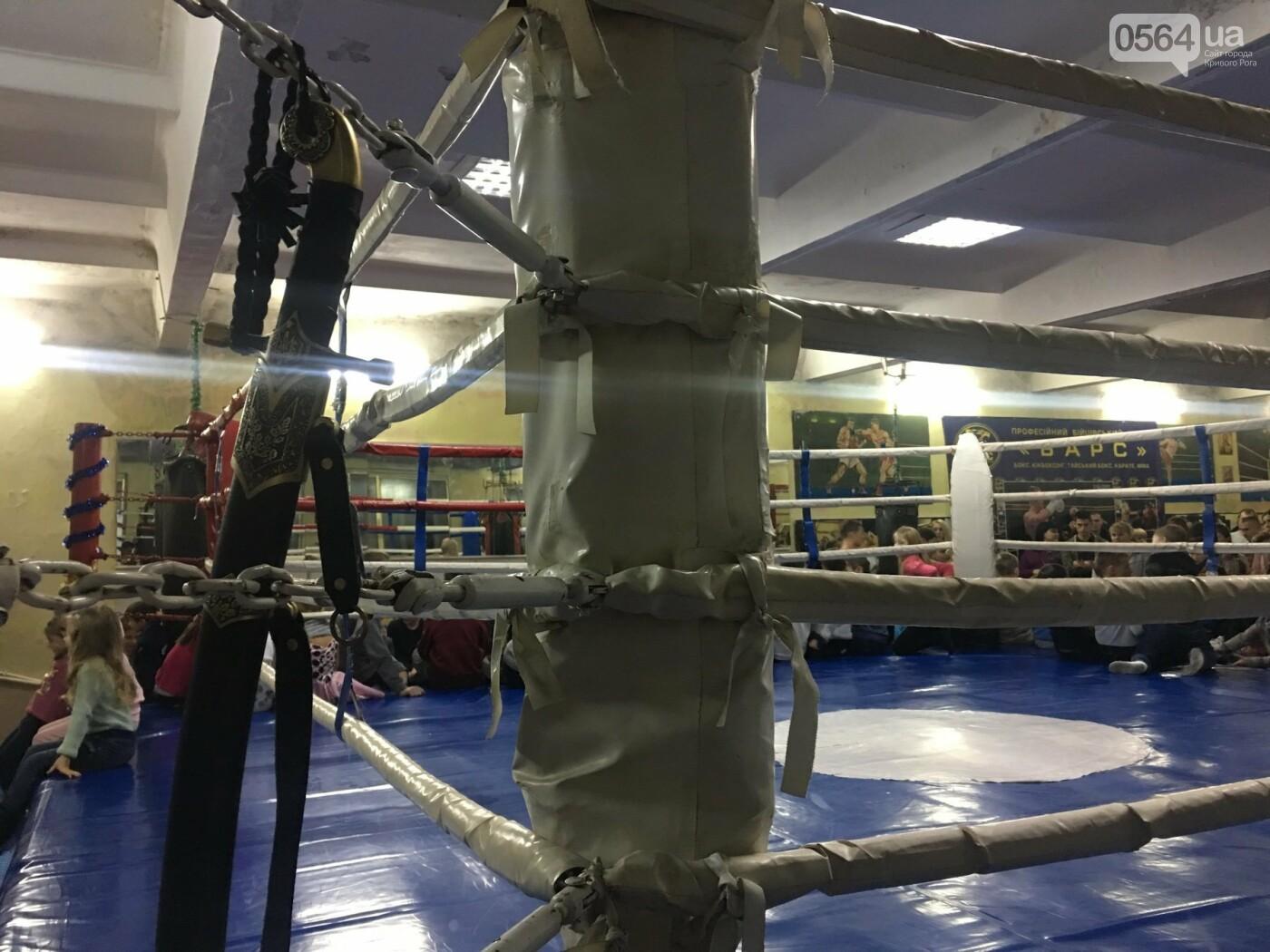 Чемпионы мира, Европы, Украины: в криворожском бойцовском клубе подвели итоги 2018 года, - ФОТО , фото-21