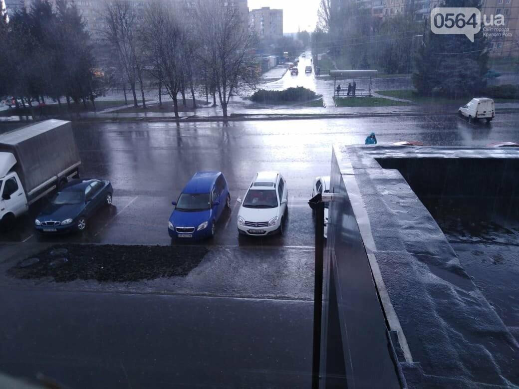 Цветущий абрикос в Кривом Роге завалило градом и дождем (Фото/Видео) Новости Днепра
