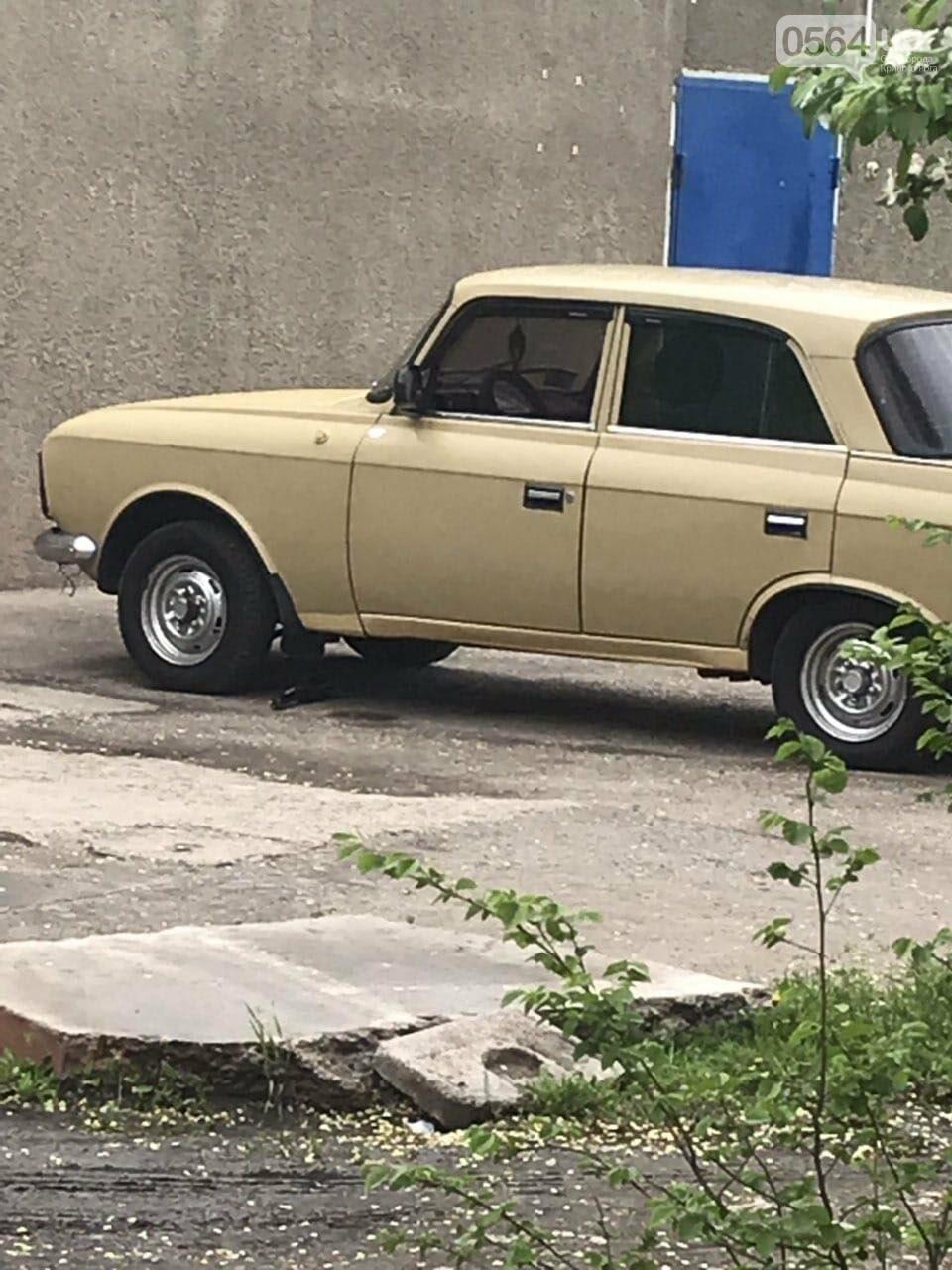 В Кривом Роге обнаружили гранату под машиной, - ФОТО , фото-1
