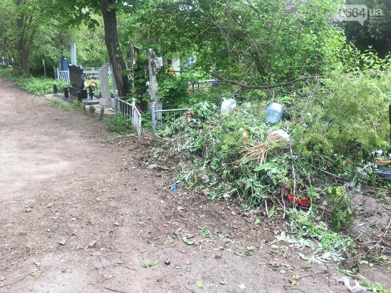 За неделю с кладбищ Кривого Рога вывезли порядка 8 тысяч кубов мусора, - ФОТО , фото-2