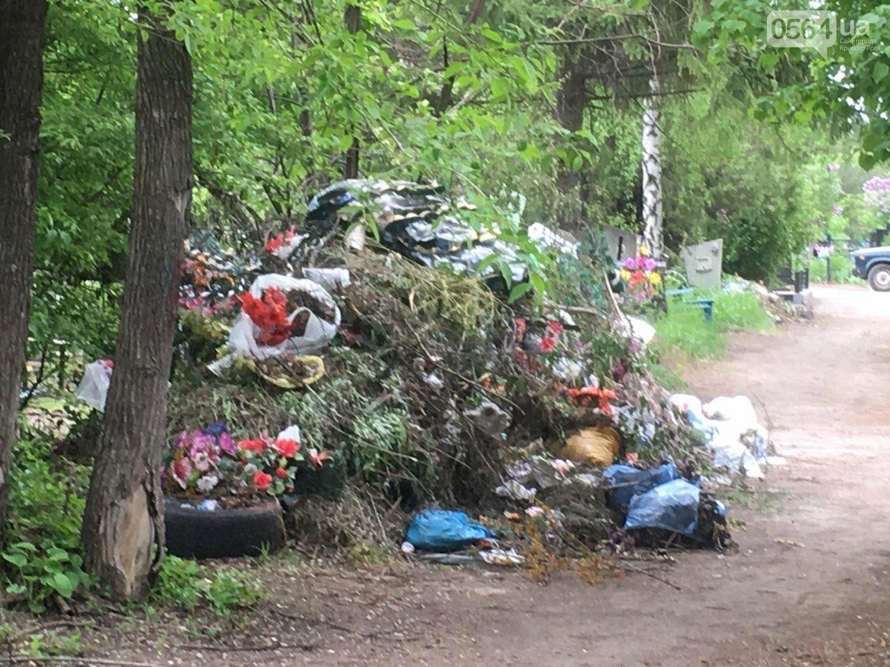 За неделю с кладбищ Кривого Рога вывезли порядка 8 тысяч кубов мусора, - ФОТО , фото-3
