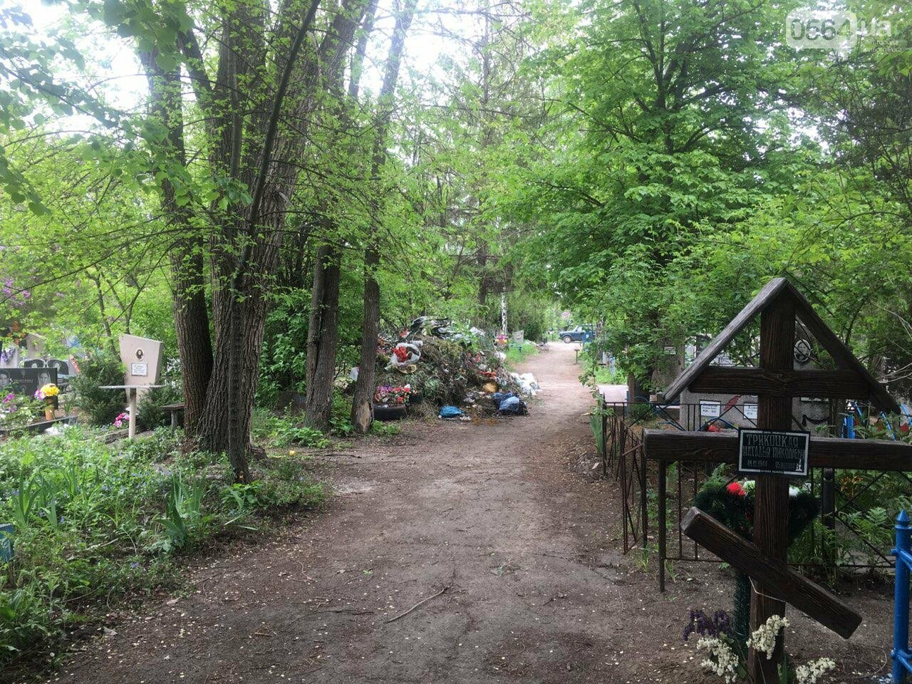За неделю с кладбищ Кривого Рога вывезли порядка 8 тысяч кубов мусора, - ФОТО , фото-6