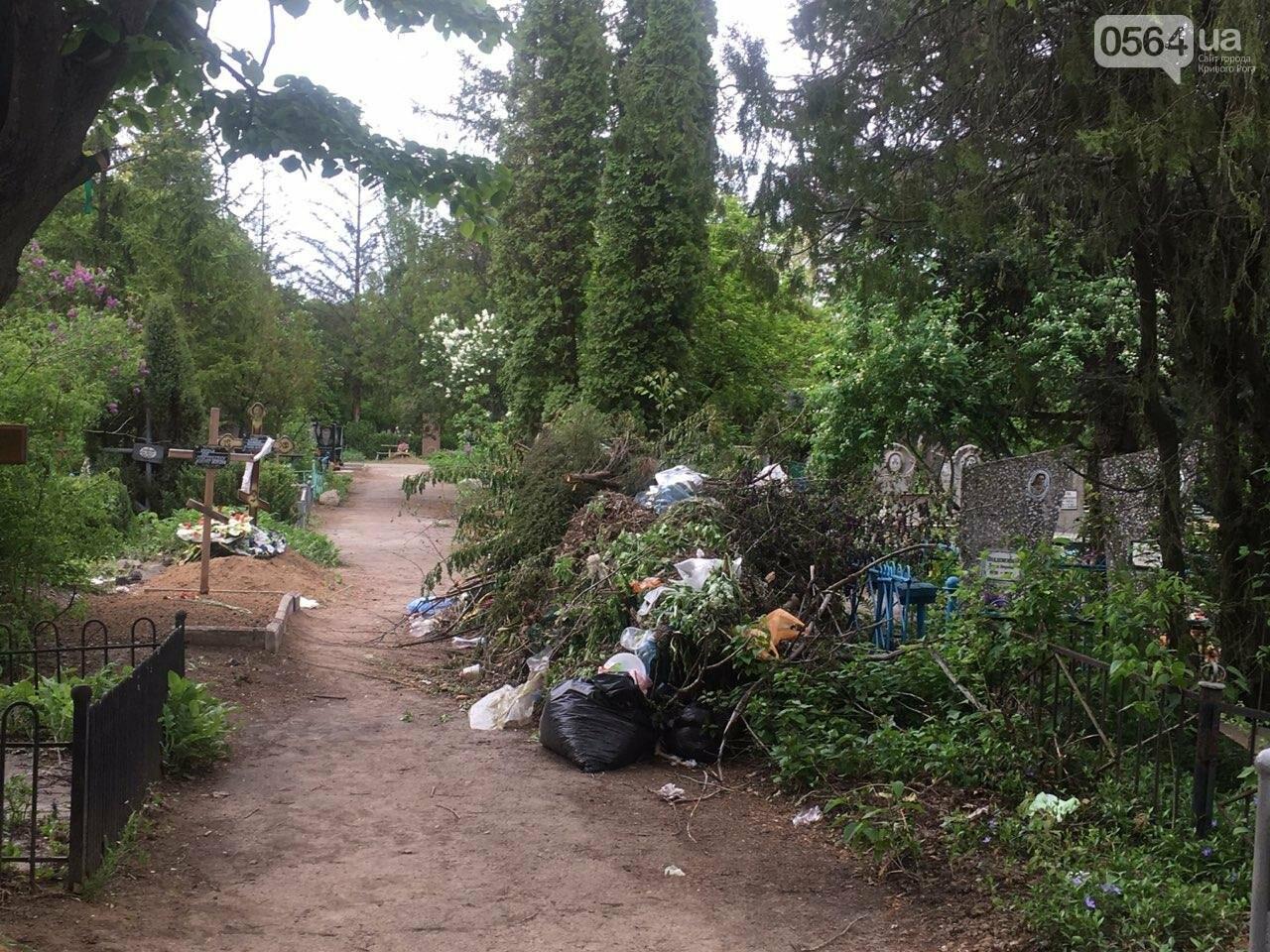 За неделю с кладбищ Кривого Рога вывезли порядка 8 тысяч кубов мусора, - ФОТО , фото-5