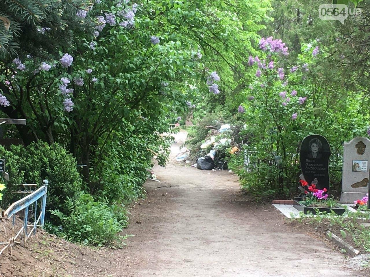За неделю с кладбищ Кривого Рога вывезли порядка 8 тысяч кубов мусора, - ФОТО , фото-17