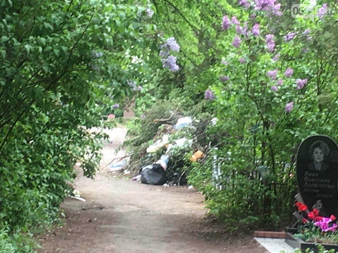 За неделю с кладбищ Кривого Рога вывезли порядка 8 тысяч кубов мусора, - ФОТО , фото-16