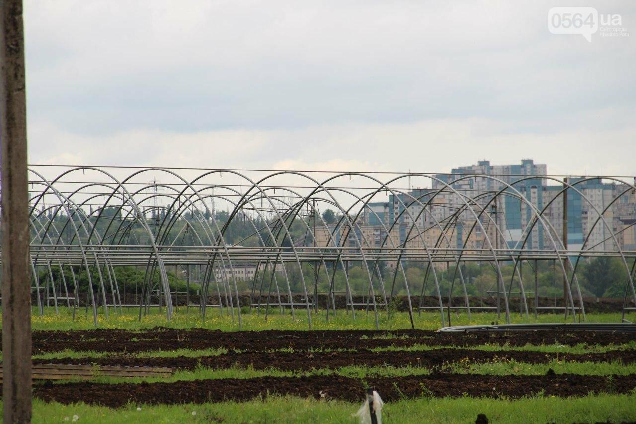"""""""Если вы это строительство не крышуете, защитите интересы громады!"""": люди обратились к нардепам от Кривого Рога, - ФОТО , фото-32"""