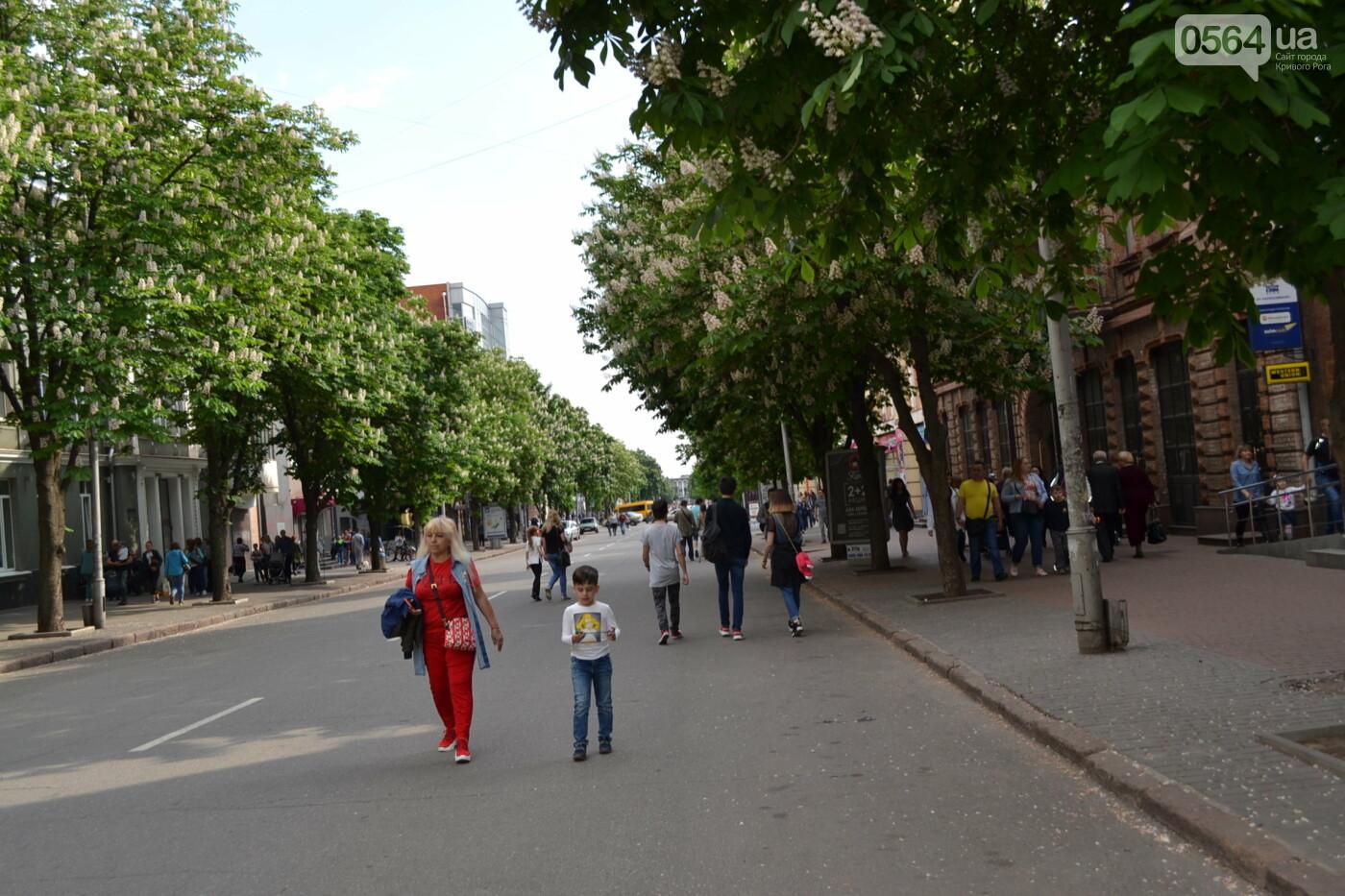 Играют все: на проспекте Почтовом в Кривом Роге проходит фестиваль уличной музыки, - ФОТО, ВИДЕО, фото-8