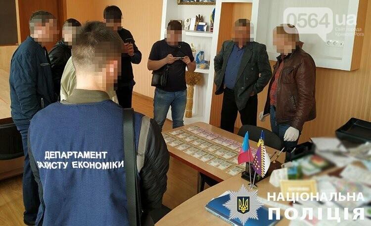 Криворожские полицейские задержали на взятке председателя райсовета, - ФОТО , фото-3