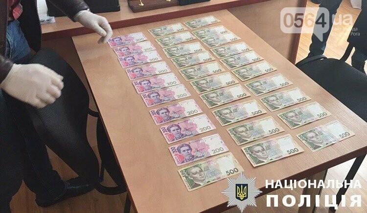 Криворожские полицейские задержали на взятке председателя райсовета, - ФОТО , фото-4