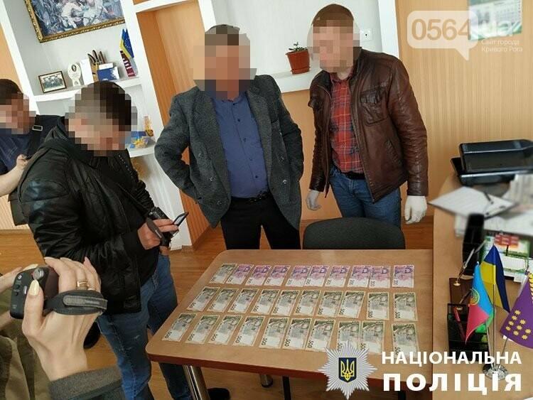Криворожские полицейские задержали на взятке председателя райсовета, - ФОТО , фото-2