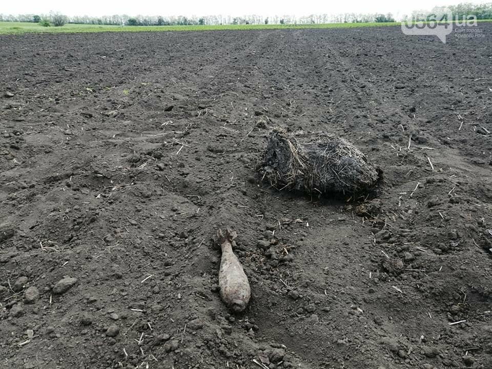 На поле под Кривым Рогом найдена минометная мина, - ФОТО, фото-2
