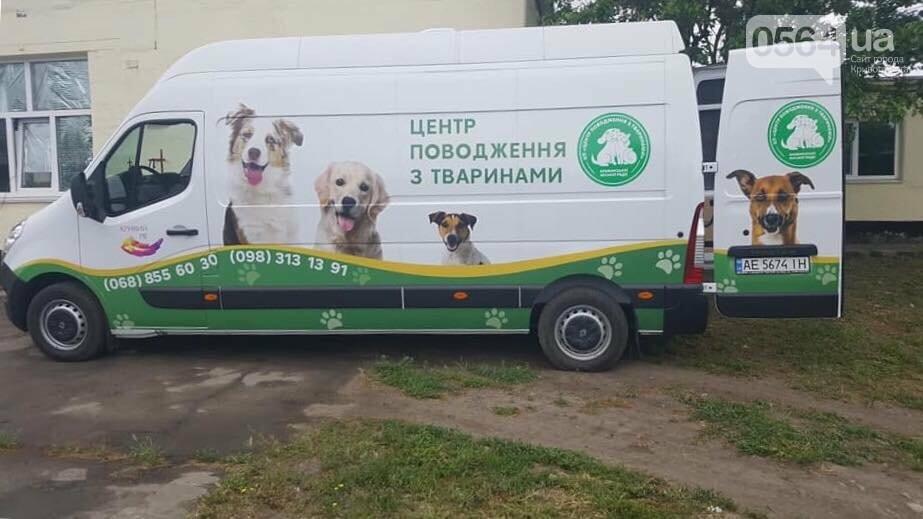 Для перевозки бездомных животных в Кривом Роге приобрели спецавтомобиль, - ФОТО, фото-1