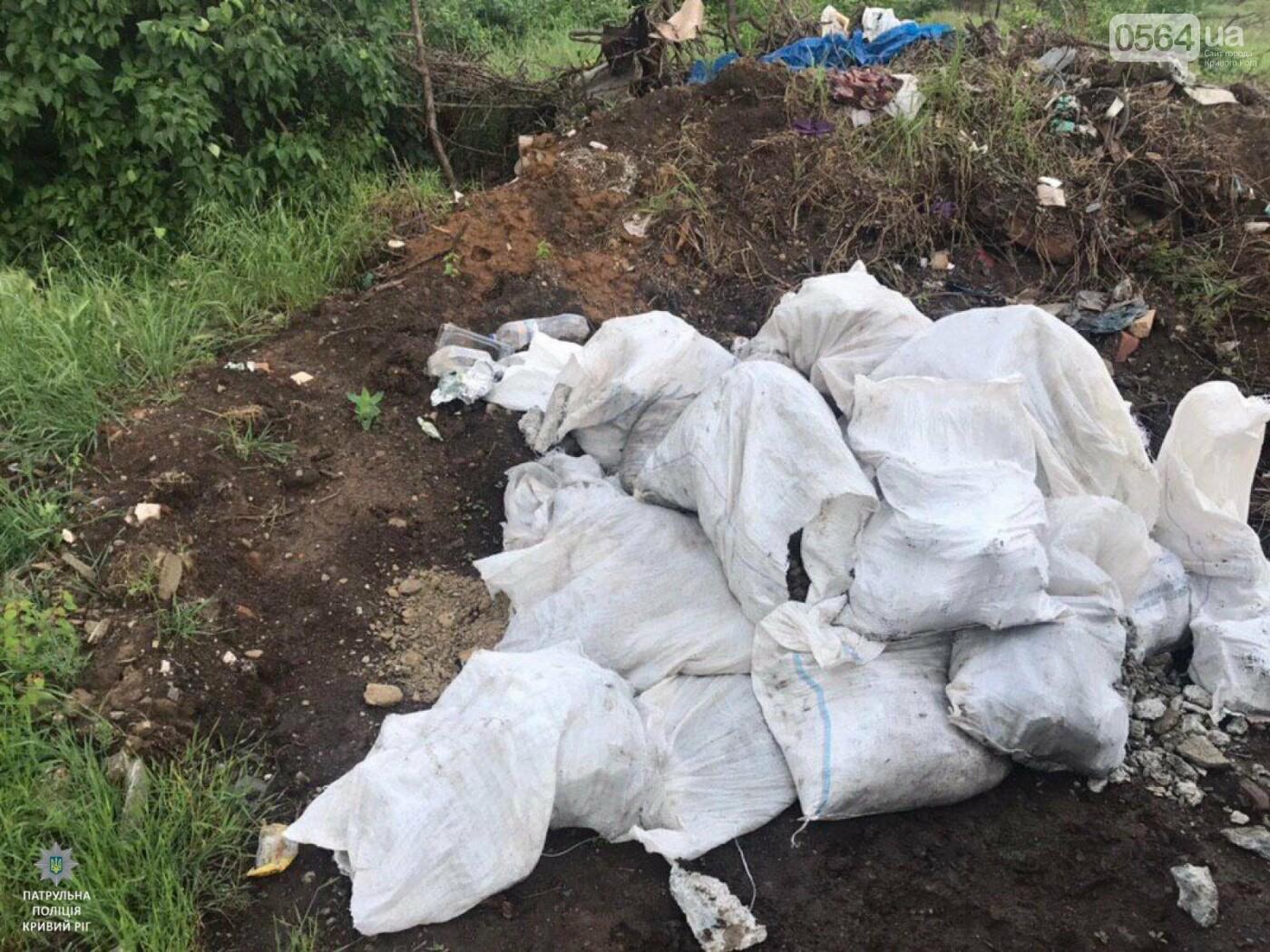 Криворожанин, который выбрасывал мусор в неположенном месте, получил админпротокол, - ФОТО , фото-2