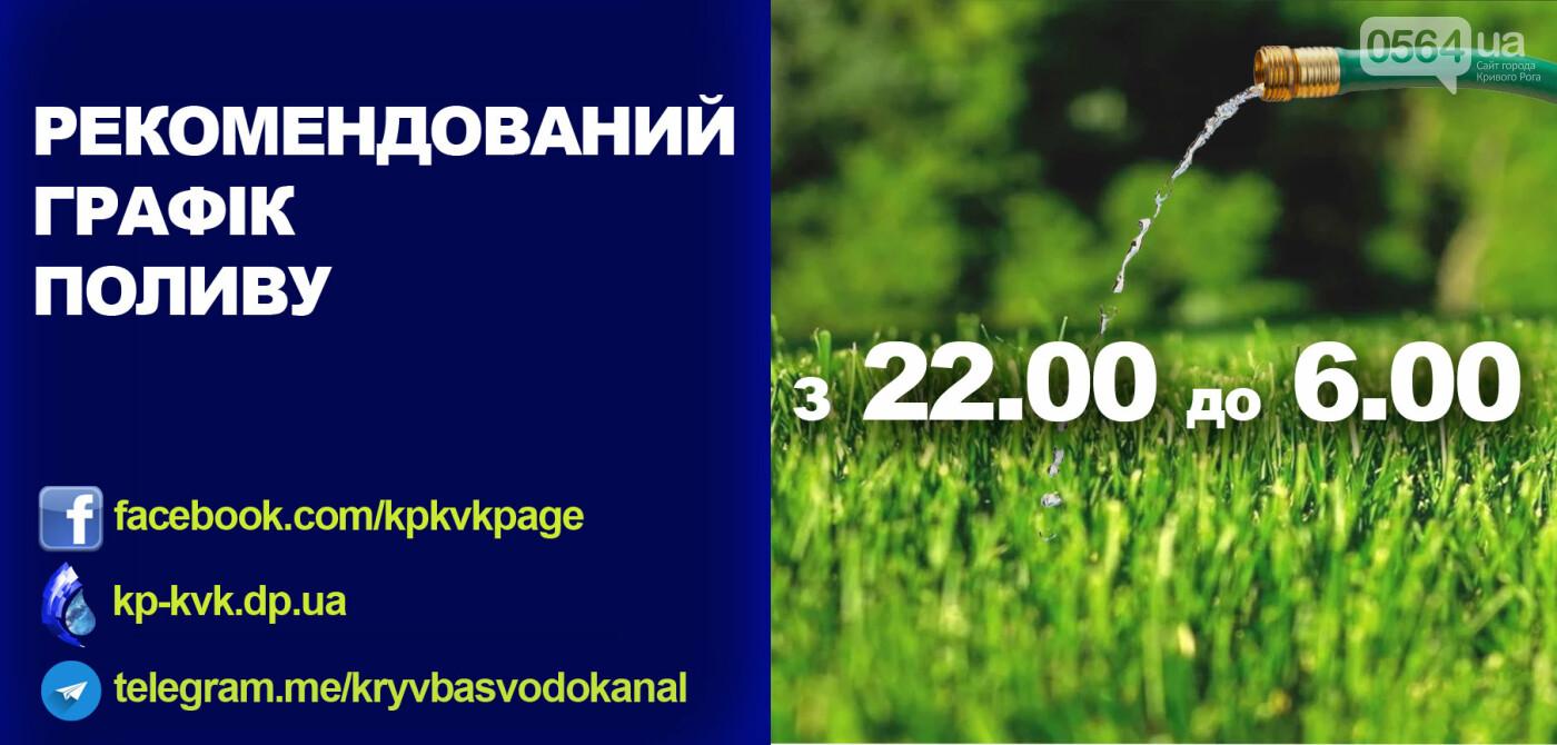 """В """"Кривбассводоканале"""" дали советы, как поливать огороды без дискомфорта , фото-1"""