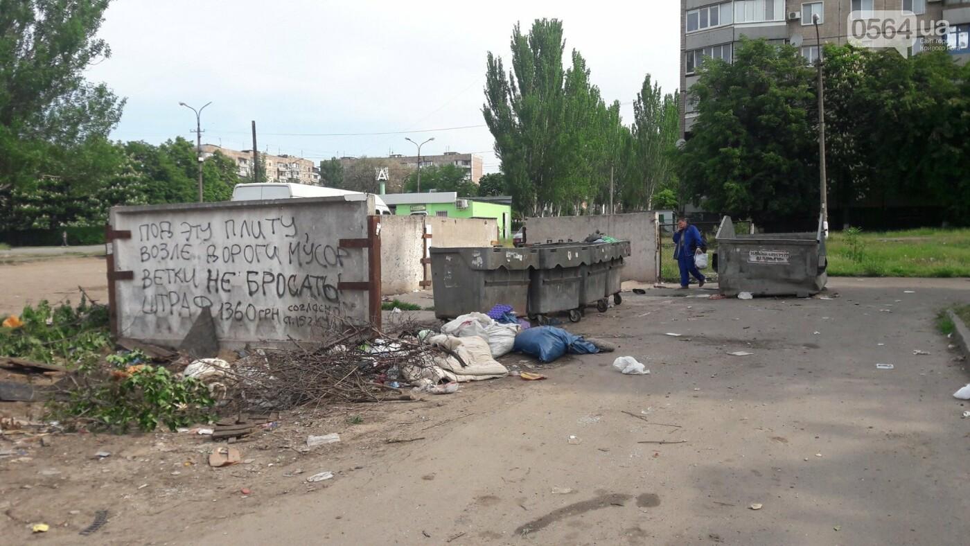 Криворожский активист показал мусор на Карачунах и обратился к мэру, - ФОТО, фото-3