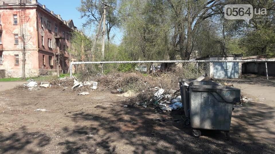 Криворожский активист показал мусор на Карачунах и обратился к мэру, - ФОТО, фото-5