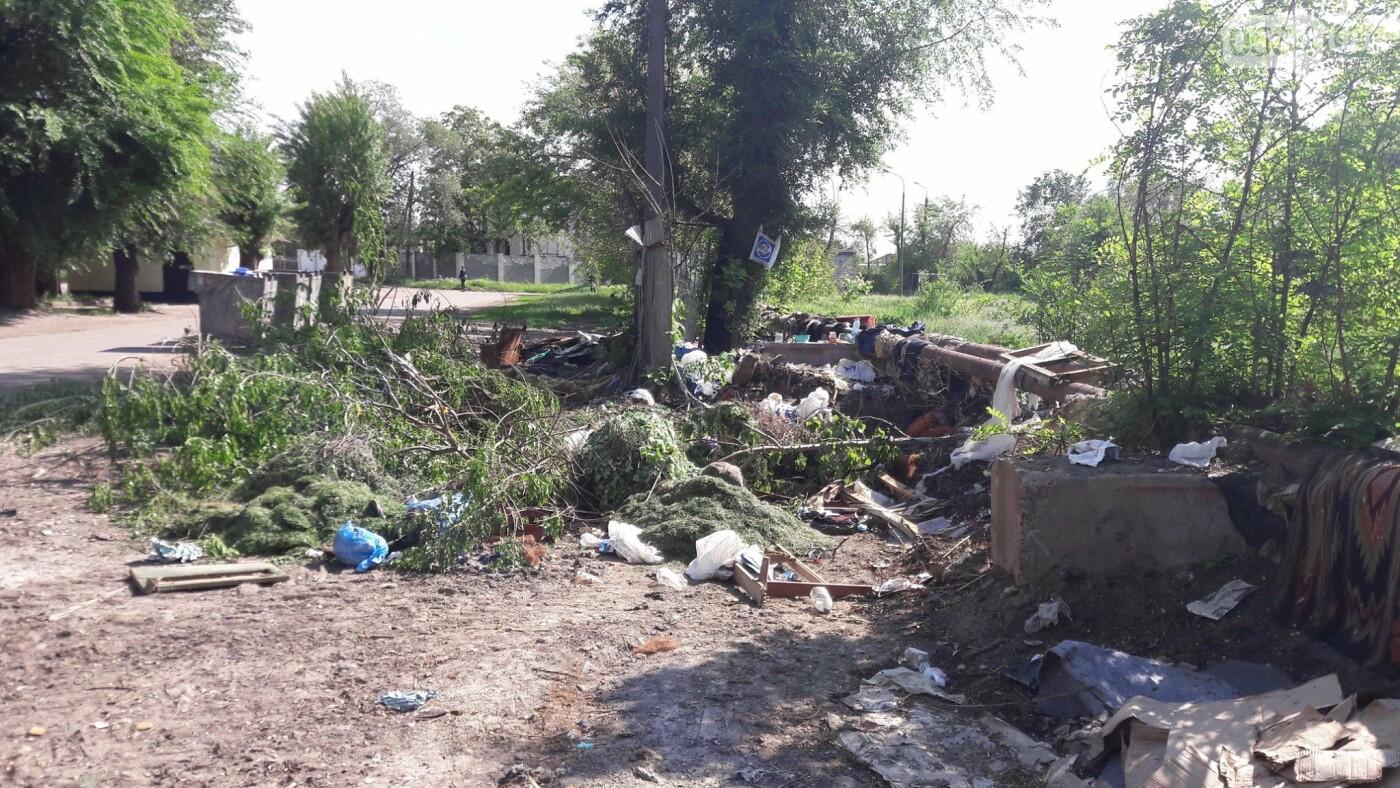 Криворожский активист показал мусор на Карачунах и обратился к мэру, - ФОТО, фото-7