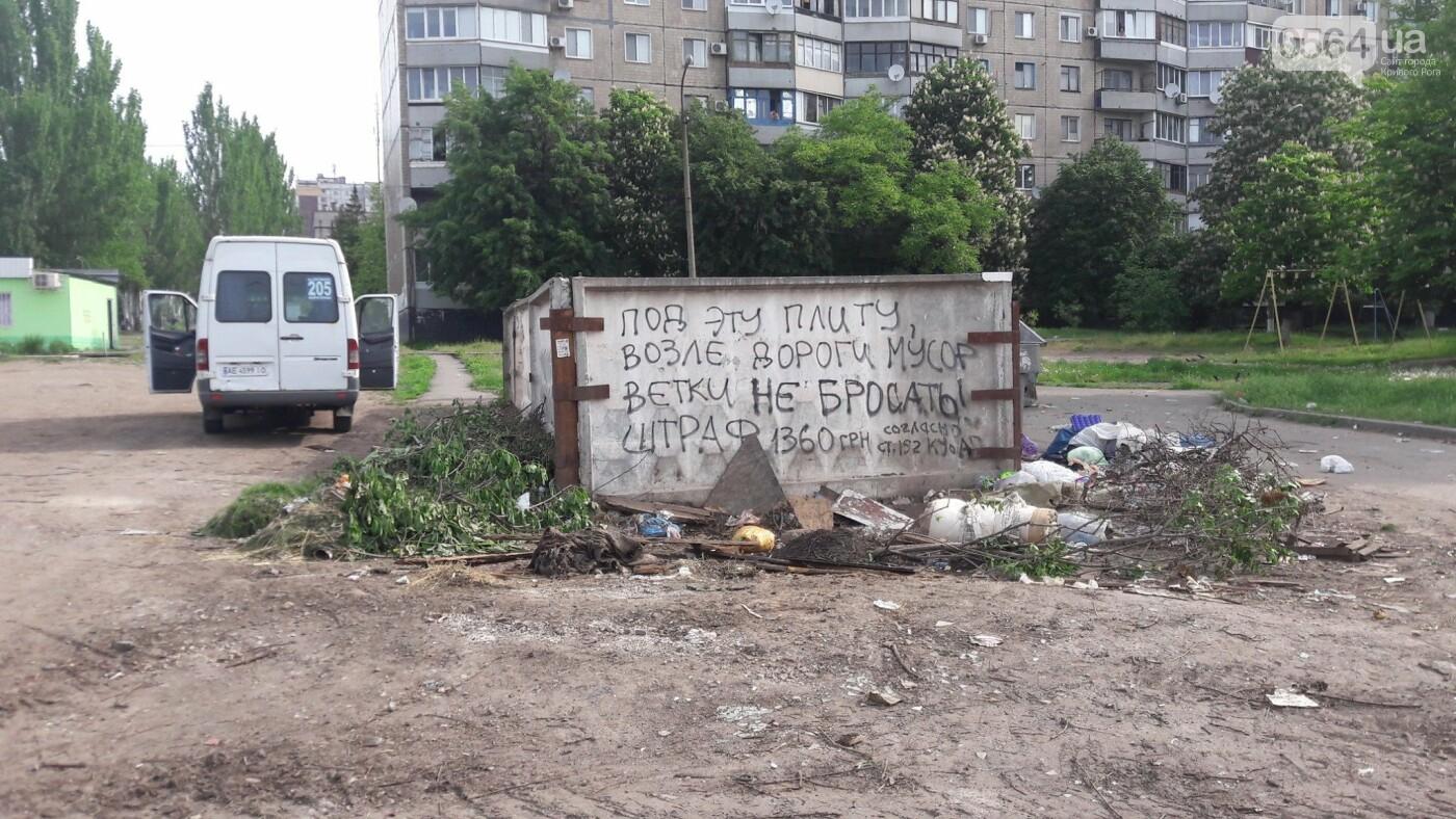 Криворожский активист показал мусор на Карачунах и обратился к мэру, - ФОТО, фото-8