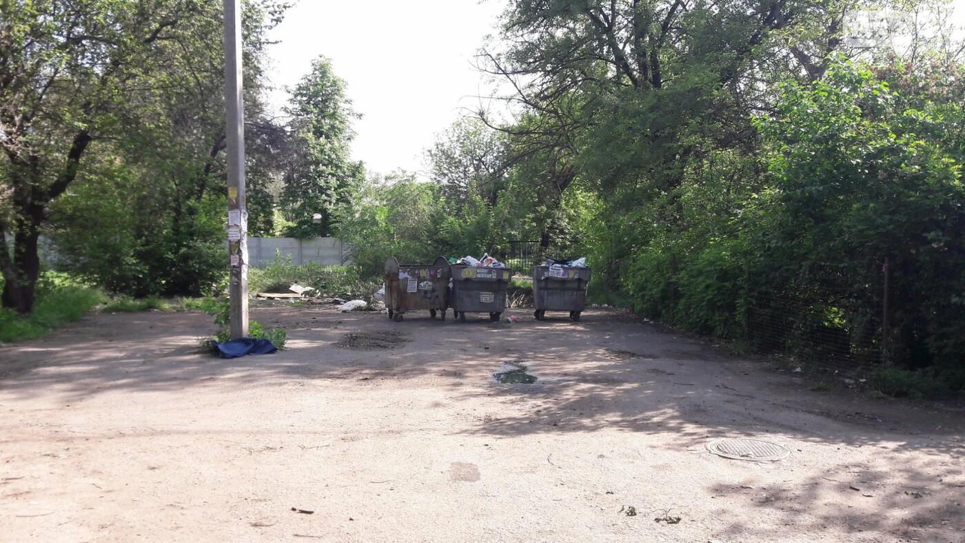 Криворожский активист показал мусор на Карачунах и обратился к мэру, - ФОТО, фото-9
