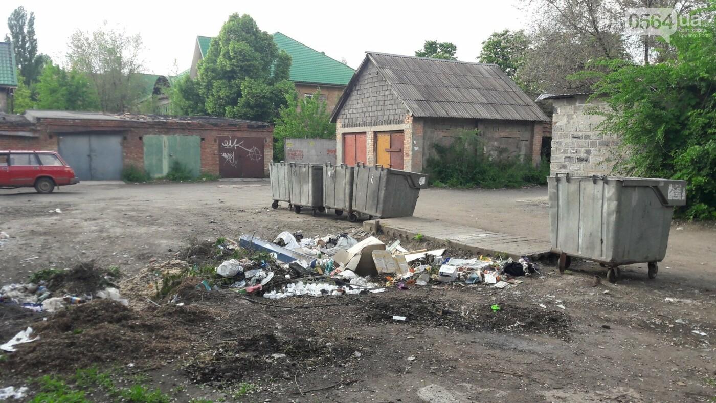Криворожский активист показал мусор на Карачунах и обратился к мэру, - ФОТО, фото-10