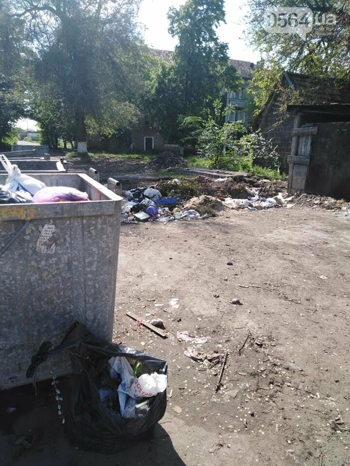 Криворожский активист показал мусор на Карачунах и обратился к мэру, - ФОТО, фото-12