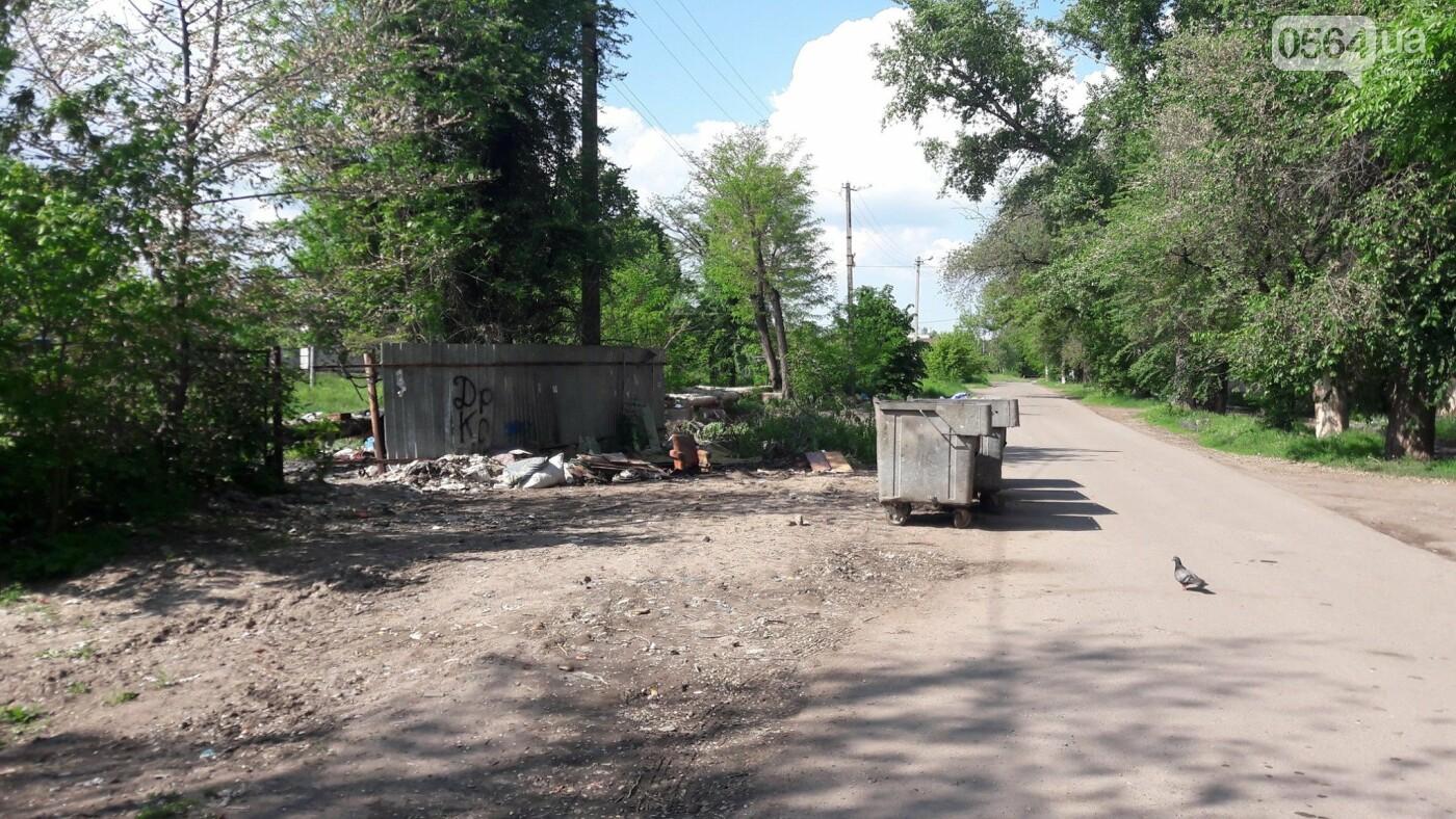 Криворожский активист показал мусор на Карачунах и обратился к мэру, - ФОТО, фото-11