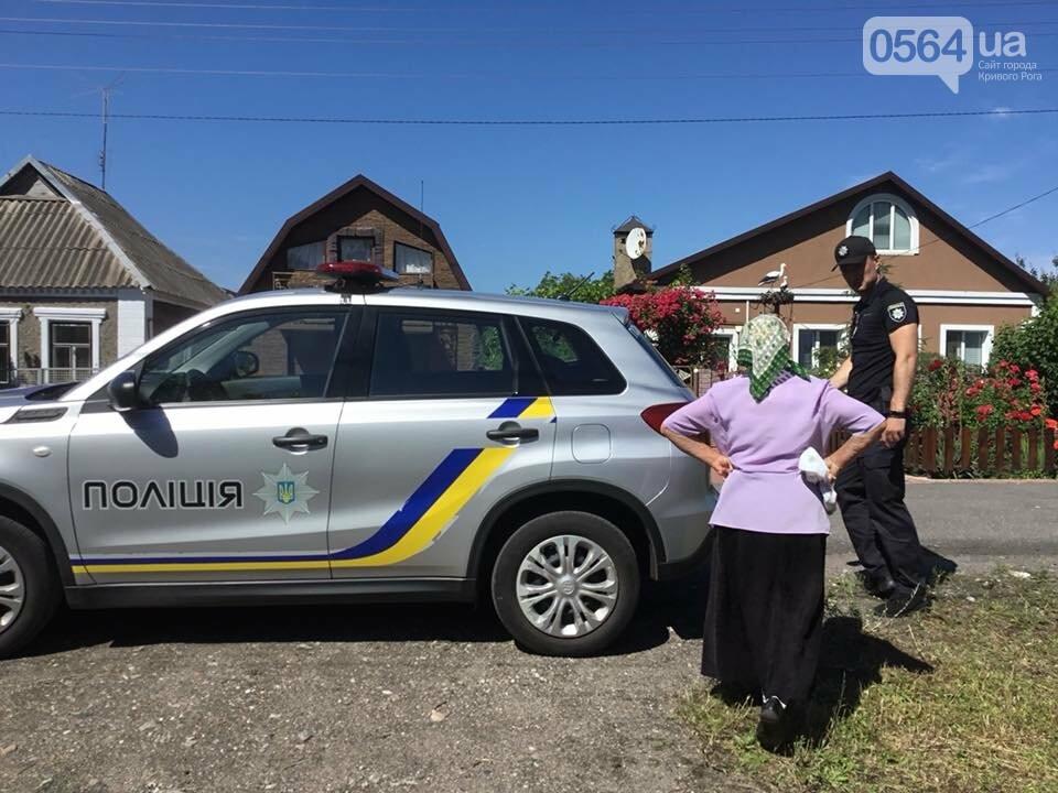 В элитном селе под Кривым Рогом неизвестные обносят дома. Поможет ли полиция? - ФОТО, ВИДЕО, фото-1