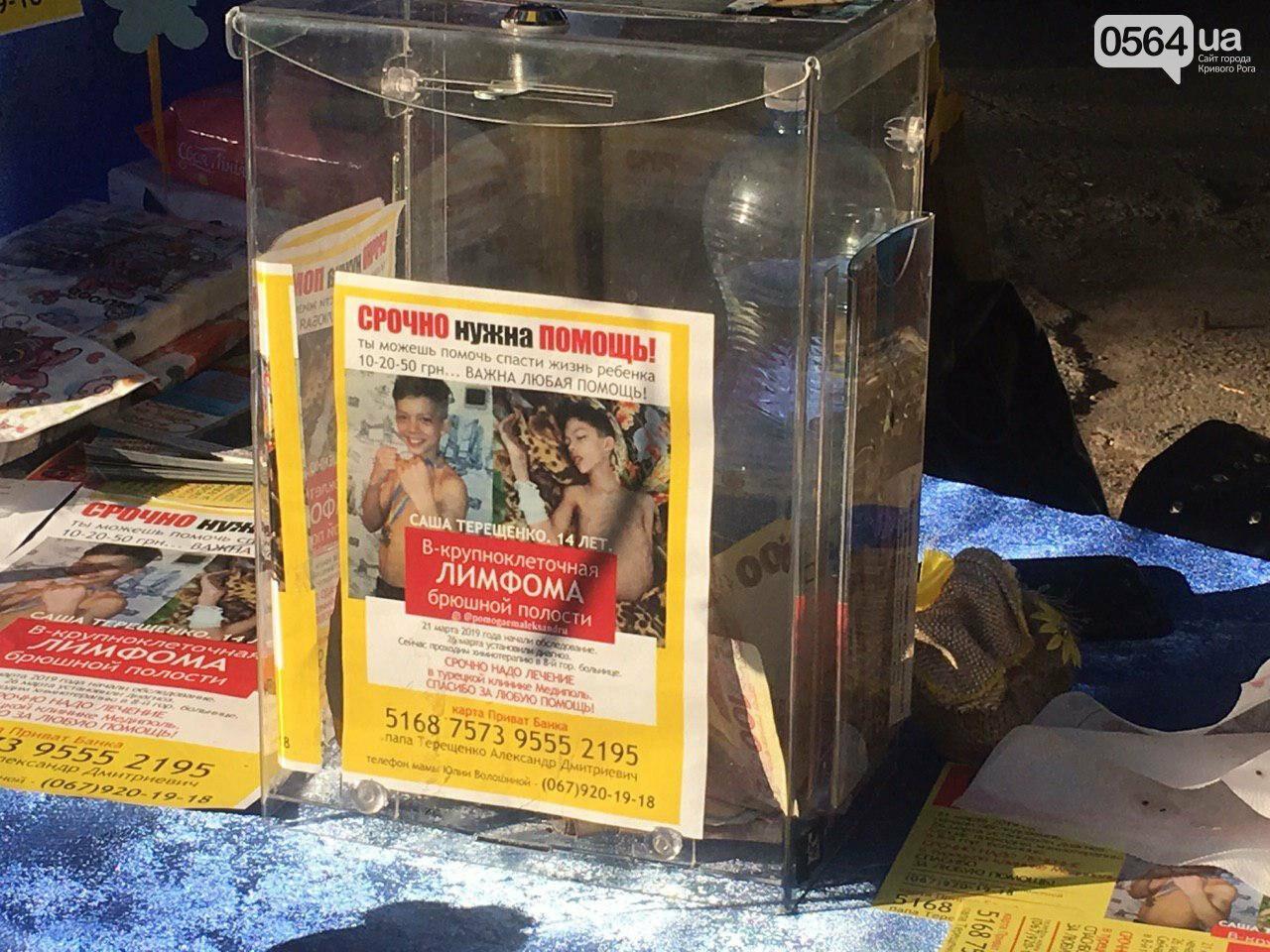 Криворожанам удалось собрать несколько тысяч гривен на фестивале «MagiCity Touch» для тяжело больного ребенка, - ФОТО, ВИДЕО  , фото-2