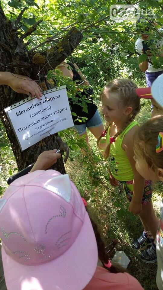Для маленьких криворожан провели экскурсию и рассказали о защите окружающей среды, - ФОТО, ВИДЕО, фото-9