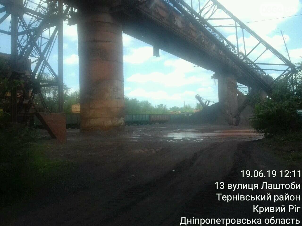 """Криворожские экологи проверили, как """"КЖРК"""" озеленяет санитарно-защитную зону и подавляет пыль, - ФОТО , фото-3"""